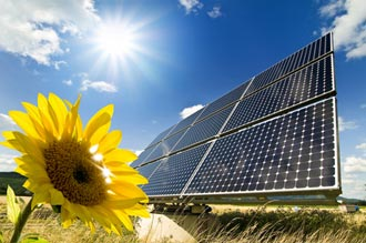 Solar cells on a field with a sunflower in front of a blue sky